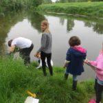 Suche nach Wassertierchen