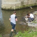 Untersuchung Gewässergüte